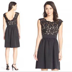Eliza J Lace Faille Cap Sleeve Dress Black L 16